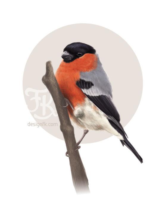 BIRD_4WM